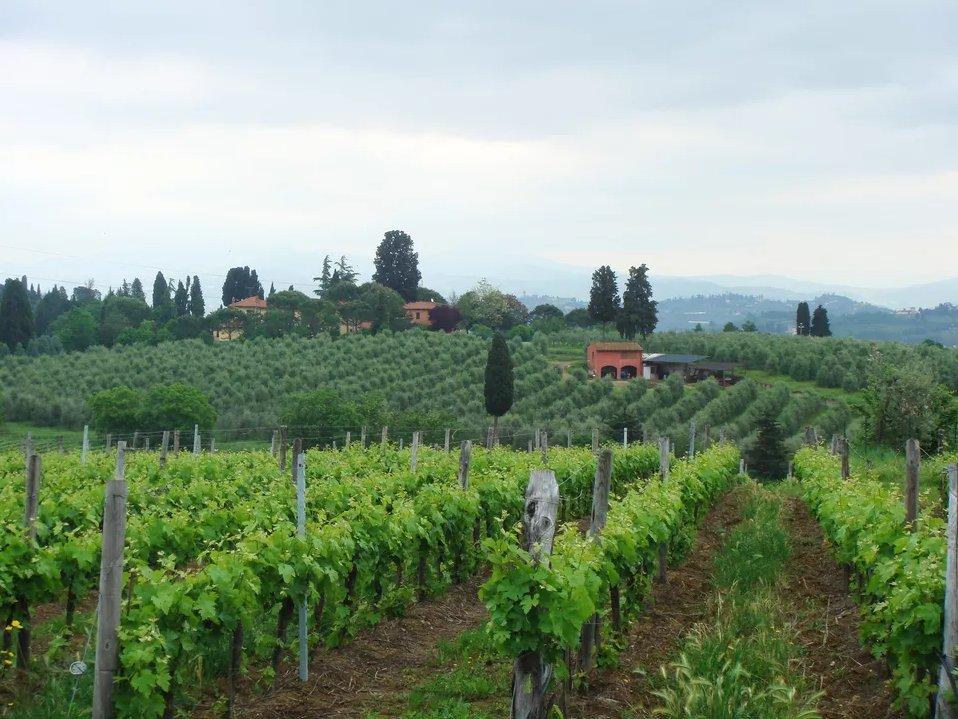 Топ 10 мест, которые нужно посетить в Тоскане  Топ 10 мест, которые нужно посетить в Тоскане chianti classico wine region top 10 places in tuscany